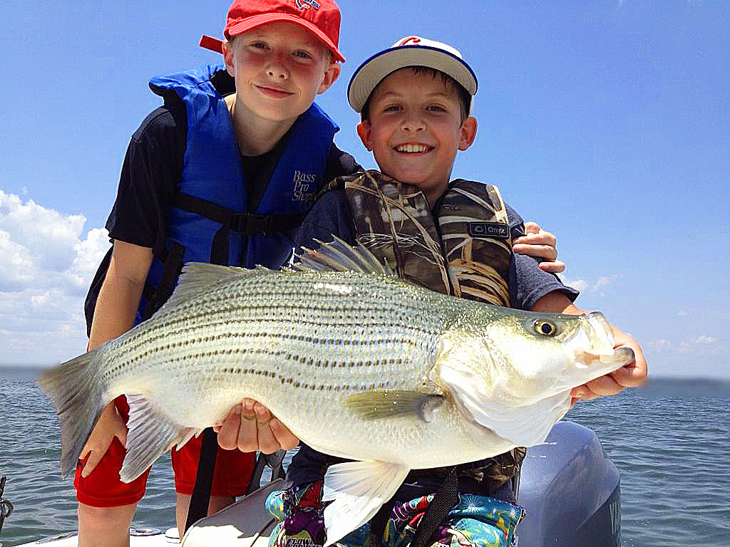 Lake tawakoni is the best lake in texas for hybrid striper for Lake tawakoni fishing guides
